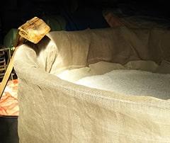 写真:酒造過程「水切り」